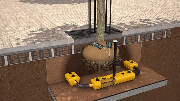 The Revolutionary Urban Tree Planting Solution – Permavoid