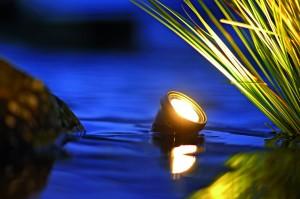 Lunaqua Spotlight in pond