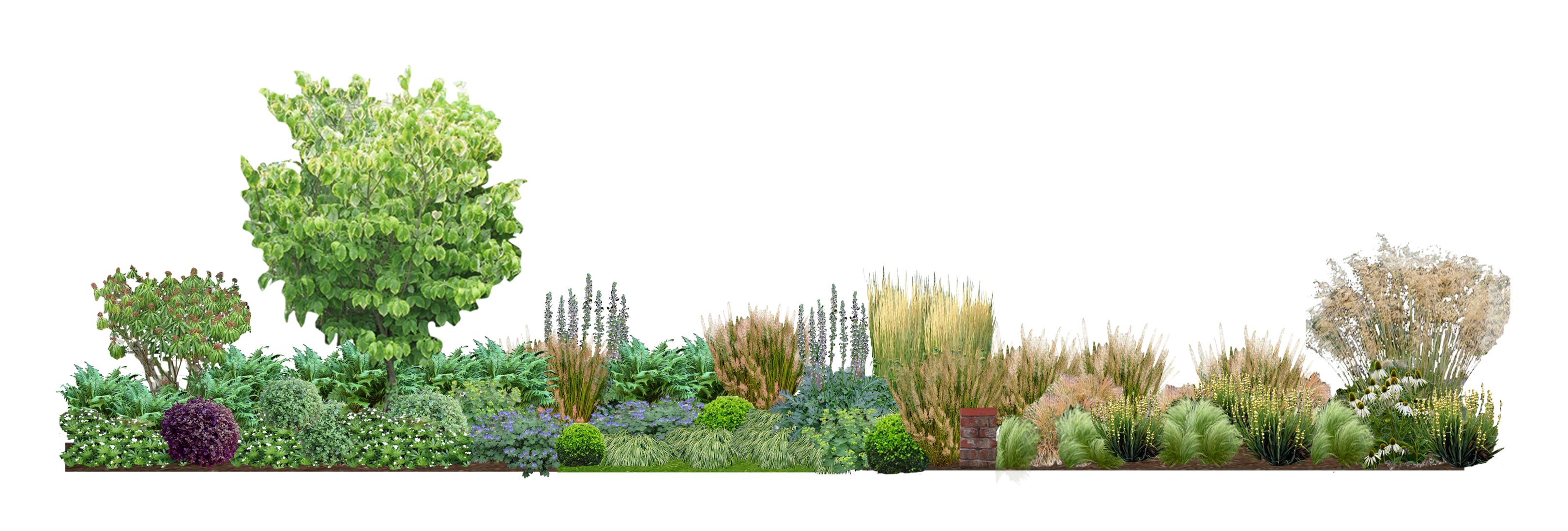 Provender Nurseries investing in the future