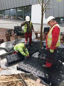 Harvey Hadden - installing the ArborRaft system
