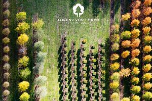 lorenz-von-ehren-nursery