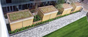 south-kilburn_sedum-cycle-shelter_scs314_03