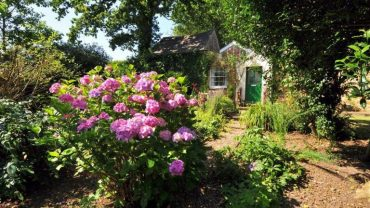 How to Create the Perfect Cottage Garden This Spring