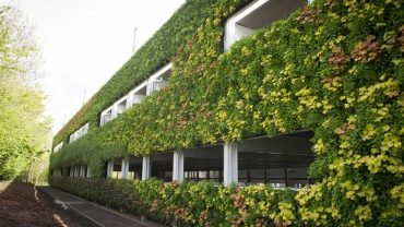 Living Walls: Reviving The Urban Jungle One Car Park At A Time
