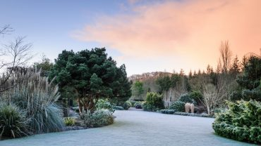 RHS Gardens Winter Events Programme December 2019 –February 2020