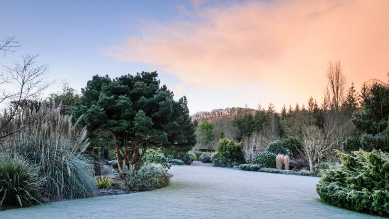 RHS Gardens Winter Events Programme December 2019 –February 2020
