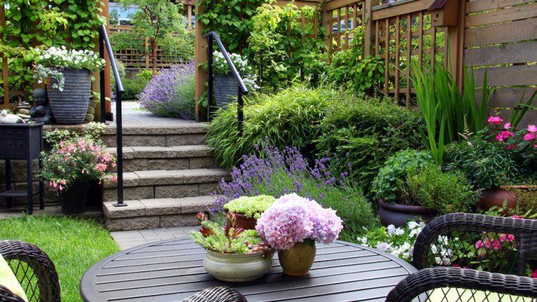 Gardening Trends to Inspire You in 2020