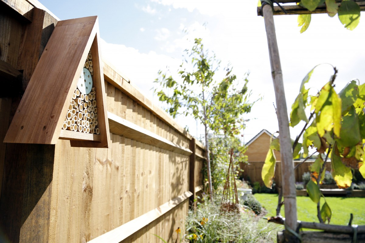 How To Build A Home For Uk Wildlife According To Leading Merseyside Housebuilder And The RSPB